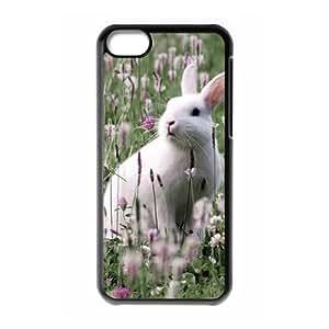 Rabbit ZLB823562 DIY Case for Iphone 5C, Iphone 5C Case
