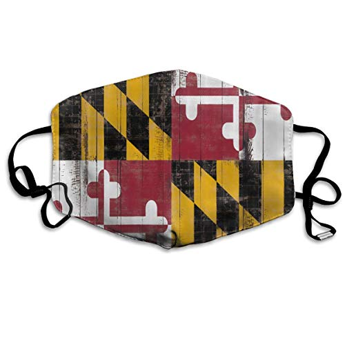 Flag of Maryland Woody Texture Mouth Mask Unisex Dust Facemask Reusable Mask for Men and -