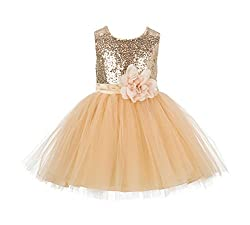 Sparkling Sequins Mesh Flower Girl Dress