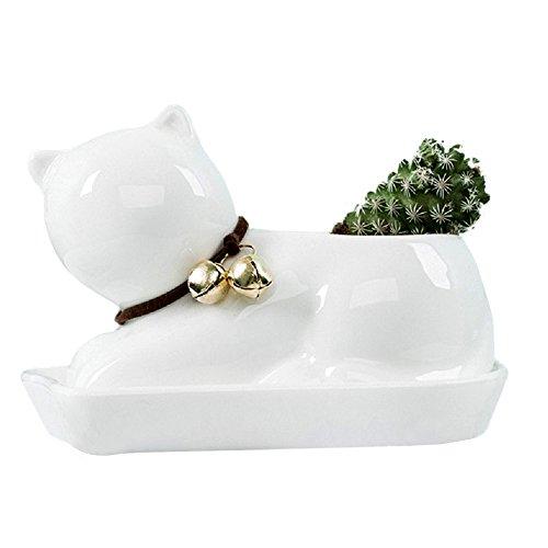 GeLive Cat Succulent Planter Decorative Flower Pot Mini Ceramic Grass Planter Plant Pots Box with Tray Saucer (White Cat) ()