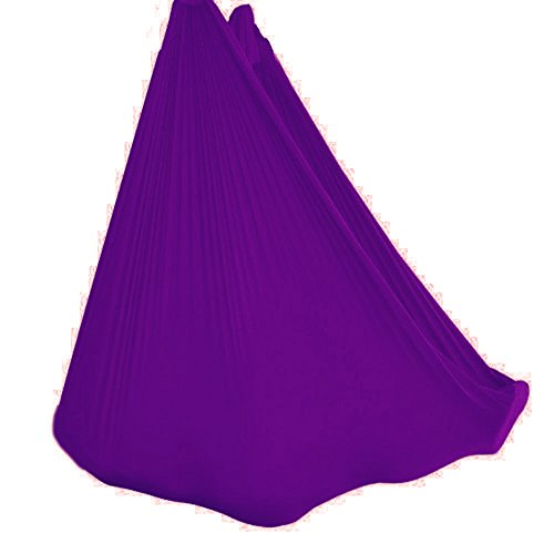 wellsem Deluxe L:5.5 Yards W:3 Yard Yoga Flying Swing Aerial Yoga Hammock Silk Fabric for Yoga Bodybuilding(5mx2.8m) (Deep Purple)