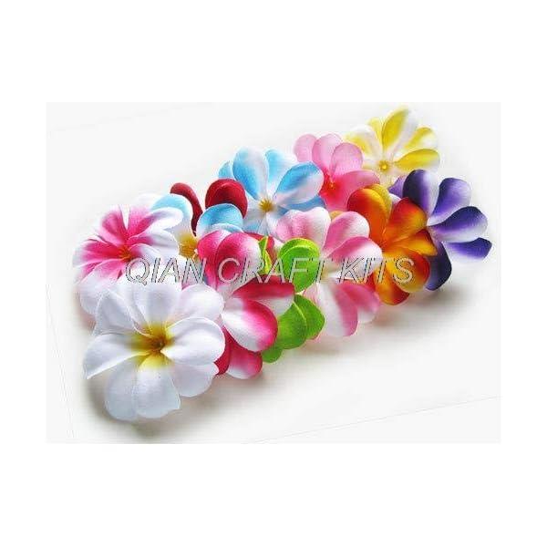 Dalab 70 Mixed Plumeria Frangipani Heads Artificial Silk Flower – 3 inches for Wedding Work, Make Hair Clips, Headbands, Hats