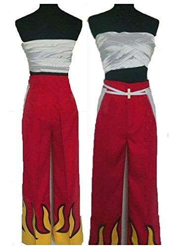 [HOLRAN Fairy Tail Erza Scarlet Cosplay combat Costume (Large)] (Combat Costumes Women)