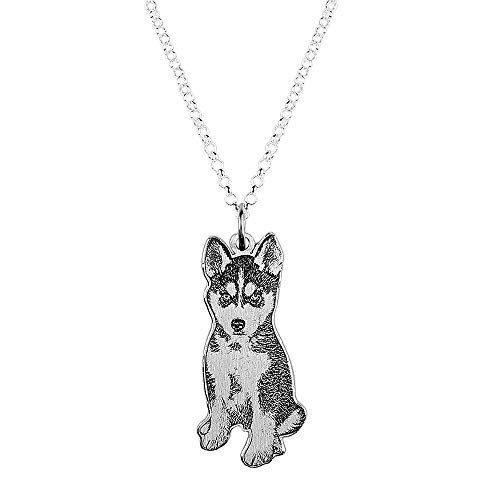 Hua Meng Personalized Pet/Cat/Dog Picture Jewelry Custom Photo Necklace Pendant Silver Pet Memorial Double Sided Pendant for Men/Women/Girls/Boys (20 inches)