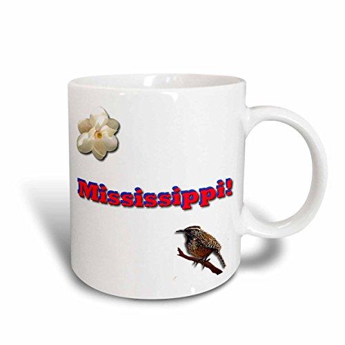 3dRose mug_38031_1 Mississippi Ceramic Mug, - Mississippi Outlet