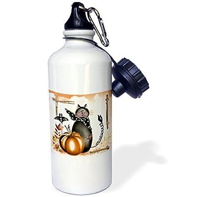 Statuear Halloween Cat Aluminium 567gram Bouteille d'eau 600ml Cadeau