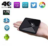 Edal [New Series]DOLAMEE D5 Android TV Box RK3229 Quad-core CPU with 1G DDR3 RAM/8G ROM Support 4K Ultra HD H.265 DLNA Miracast Airplay