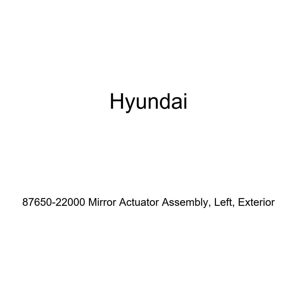 Genuine Hyundai 87650-22000 Mirror Actuator Assembly Exterior Left