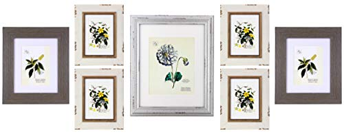 kieragrace KG Farmhouse Gallery Set - Set of 7, 4 5-Inch by 7-Inch Matted for 4-Inch by 6-Inch, 2 8-Inch by 10-Inch Matted for 5-Inch by 7-Inch, 1 1-Inch by 14-Inch Matted for 8-Inch by 10-Inch (Collage Picture Frames Multicolor)