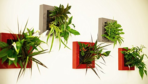 Tableau Vegetal A Faire Soi Meme Sans Plantes Technologie Mur