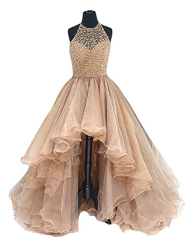 TBGirl Beading Champagne Organza Dresses product image