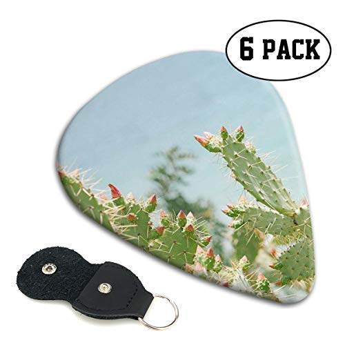 Karen Felix Classic Guitar Pick (6 Packs) Cactus Thorn Celluloid Guitar Picks Plectrums for Guitar Bass ()