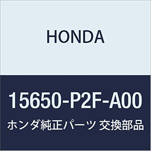 -P2F-A00) Oil Dipstick ()