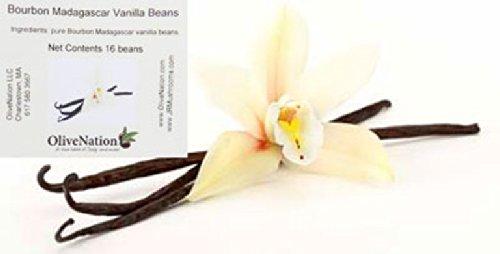 Premium Bourbon-Madagascar Vanilla Beans - 16 beans JR Mushrooms brand