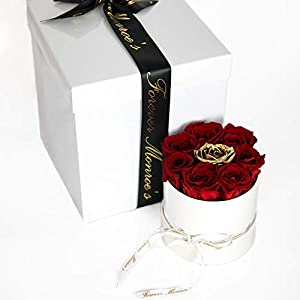 Forever Monroe's Preserved Real Red Roses in a Round White Box, Long Lasting Red and Gold Roses that last a year 23