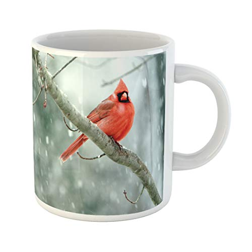 Semtomn Funny Coffee Mug Red Birds Cardinals in Late Spring Snowstorm Nashville Tennessee Cold 11 Oz Ceramic Coffee Mugs Tea Cup Best Gift Or -