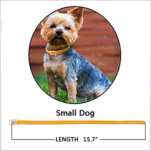 LBJ Adjustable Flea and Tick Collar for Dog Cat,Natural Non-Toxic Waterproof Pest Control (2Pack),40cmforsmalldog by LBJ (Image #1)