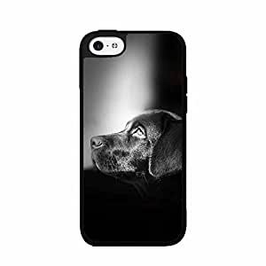 Dog Is a Man's Best Friend Plastic Fashion Phone Case Back Cover iPhone 4 4s by lolosakes
