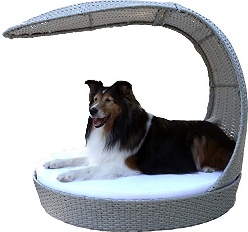 The Refined Canine Outdoor Dog Chaise Lounger - Smoke (Large)