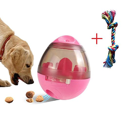 Pet Food Dispenser Ball and Dog Chew Rope Toy - IQ Treat Dis