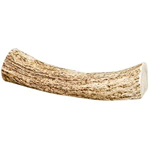 Amazon.com : Center Cut Antlers for Dogs [Medium] (10 Pack