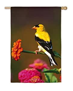 Goldfinch Flag (Garden Size)