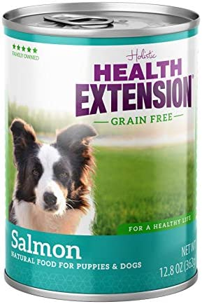 Health Extension Grain Free Salmon Entree Canned Wet Dog Food – 12 12.8 Oz Cans