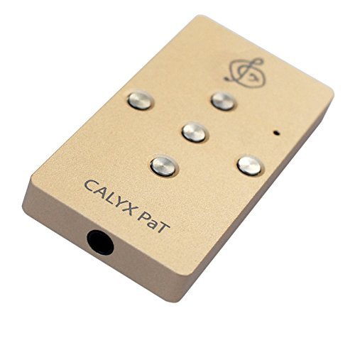 Calyx Audio PaT Portable USB DAC and Headphone Amplifier - Gold by Calyx Audio