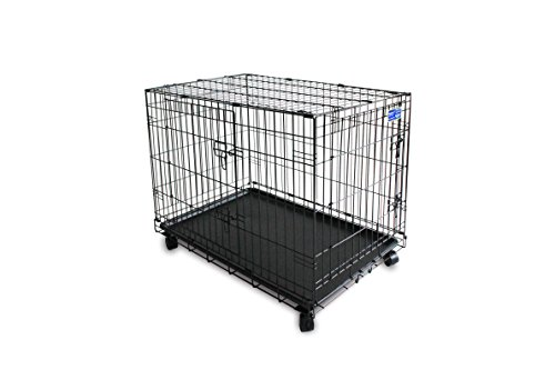 pet plus double door folding metal dog crate 36 inch cages With pet supplies plus dog cages