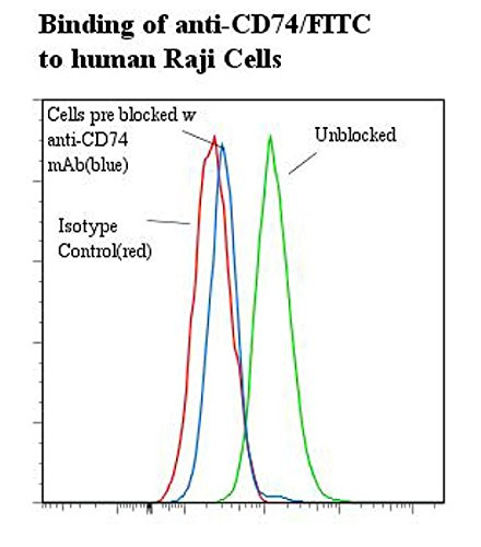 anti-human CD74-FITC (Antibody)