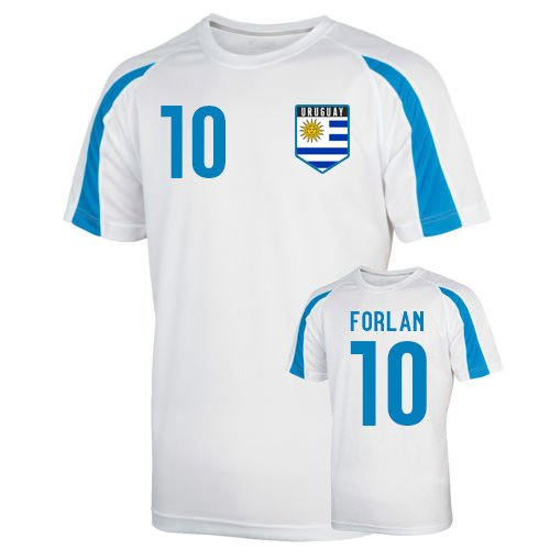 Uruguay Sports Training Jersey (forlan 10) B01N6J1PYC Large (42-44
