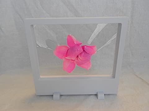 3D Display Floating Frame, Display Case, Shadow Box, Excellent for Jewelry, Shells, Stones, Coins, Flowers collected (Big, White)