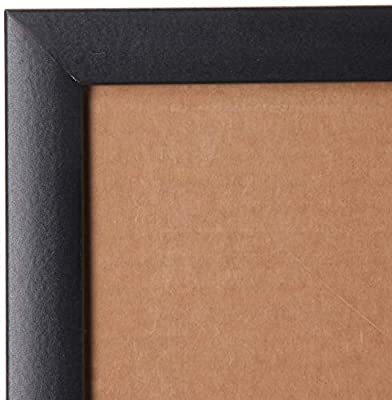Craig Frames Picture Frame, 1.26-Inch Wide, Color and Finish Options