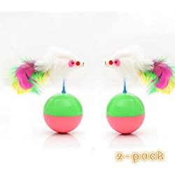 Interactive Cat Toys (Set of 2) by IN HAND Cat Teaser Ball Toy with Feather, Mouse Tumbler Toys Pet Interactive Wobblers Toy,GREEN and PINK