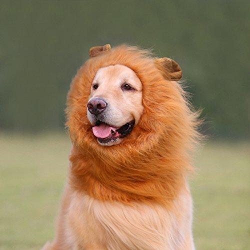 Viviving Lion Mane Peluca, Disfraz de Mascota Ajustable con Orejas para Perro (marrón): Amazon.es: Productos para mascotas