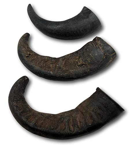 Top Dog Chews 3 Pack Natural Water Buffalo Horns
