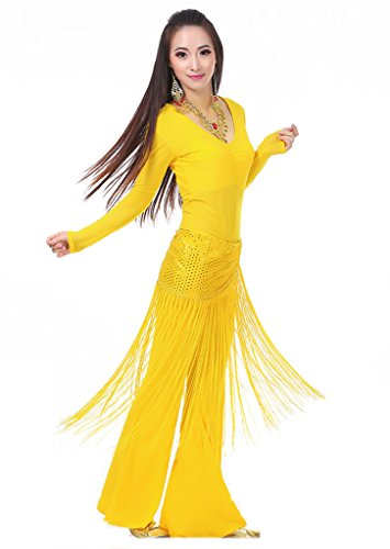 Professional Turkish Belly Dance Costumes (Bmeigo Belly Dance Professional Costume Set Tops Pants and Waist Chain)