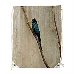 An Everyday Gym Bag, Bird Coraciiformes Turquoise Tail Beak Swallow Twig Feather Perching bird Wildlife,Sport Equipment