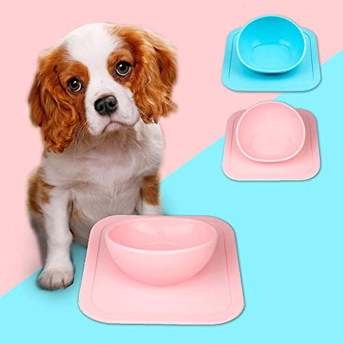 Buy suction cup bowls for pets
