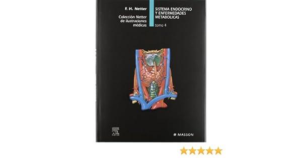 sistema endocrino y enfermedades metablicas netter