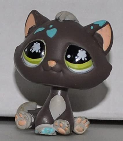 Amazoncom Kitten 815 Brown Green Eyes Paint On Head And Paws