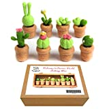 Artec360 Felting Kits Cute Succulent Plants With Tutorial, 3 Needles, 1 Foam Pad for Felting Needle Starter (Pack of 8)