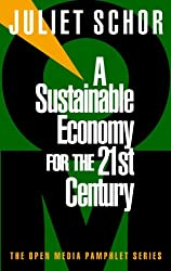 A Sustainable Economy for the 21st Century (Open Media Series)