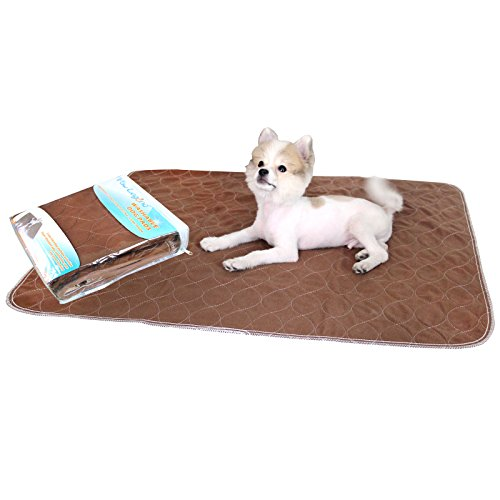 Paw Legend Reusable Dog Pee Pads (2 Pack) of 30