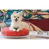 Pet Lounge Studios AB2C-22TO Acrylic Cushion