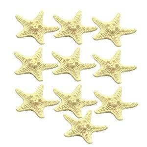 VOSAREA 10 Piezas Imanes de Nevera de Resina de Estrella de Mar ...