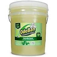 Best OdoBan Concentrate Eucalyptus Eliminator Cleaner