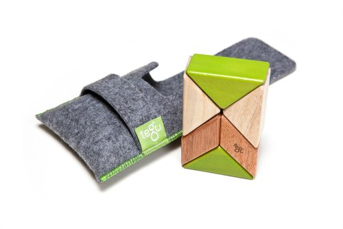 6 Piece Tegu Pocket Pouch Prism Magnetic Wooden Block Set, Jungle (Magnetic Jungle Blocks)