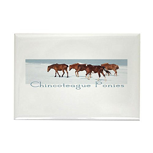 CafePress Chincoteague Ponies Rectangle Magnet Rectangle Magnet, 2