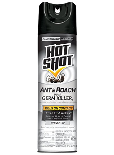Hot Shot Killer2 Unscented HG 66300